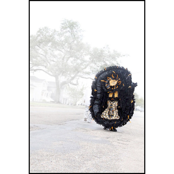 Mardi Gras Indian going home, New Orleans, La